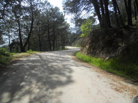 Camino de la Peguera Piedralaves