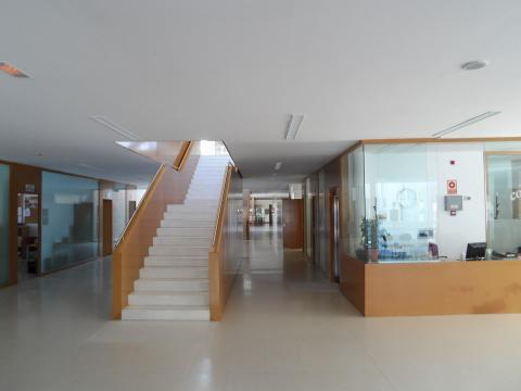 Colegio Público de Piedralaves
