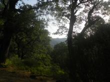 Naturaleza en Piedralaves. Cuidalá.